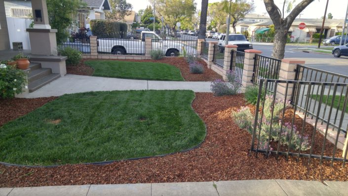 long beach landscaping contractor